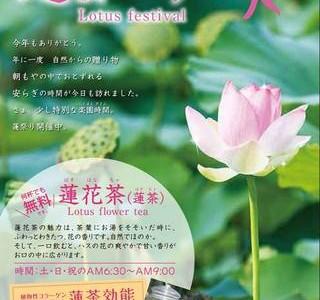 2014年6月21日(土)~7月31日(木)2014 蓮まつり / 沖縄市・東南植物楽園