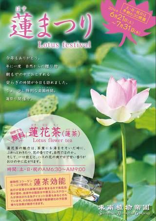 2014 蓮まつり / 東南植物楽園