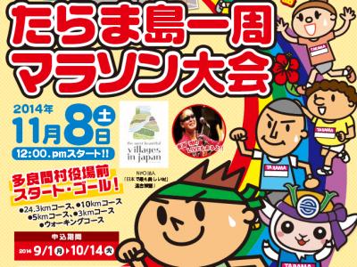 2014年11月8日(土)第17回たらま島一周マラソン大会 / 多良間島