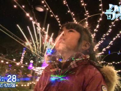 2014年12月23日(火・祝)~12月28日(日)第19回 沖縄こどもの国 クリスマスファンタジー'14 / 沖縄市・沖縄こどもの国