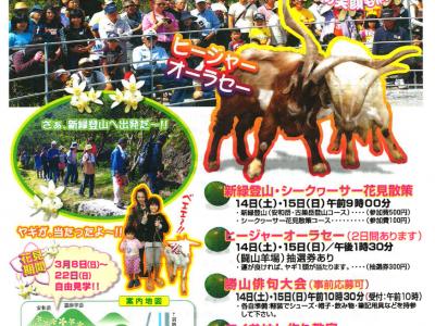 2015年3月14日(土)・15日(日)第11回勝山シークヮーサー花香り祭 / 名護市勝山公民館・グラウンド