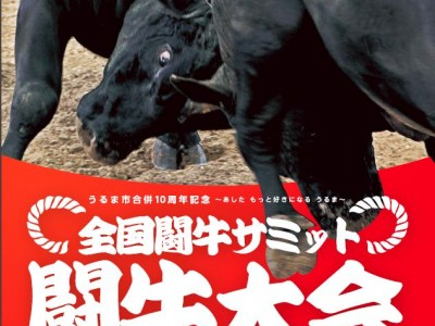2015年5月9日(土)全国闘牛サミット闘牛大会 / うるま市・石川多目的ドーム