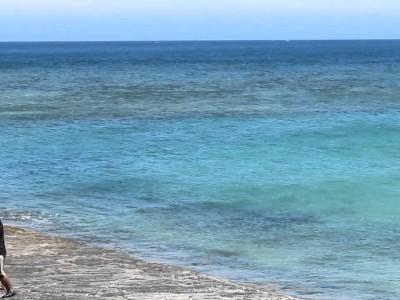 2015年4月18日(土)宜野湾トロピカルビーチ海びらき / 宜野湾市トロピカルビーチ