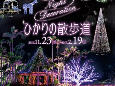 2016年11月23日(水・祝)~2017年2月19日(日)ひかりの散歩道 TONAN Night Decoration(ナイトデコレーション) / 沖縄市・東南植物楽園