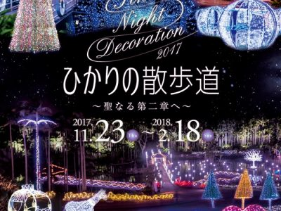2017年11月23日(木・祝)~2018年2月18日(日)ひかりの散歩道 TONAN Night Decoration2017~聖なる第二章へ~ / 沖縄市・東南植物楽園