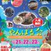 OKINAWA やんばる会のフライヤー1