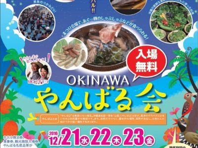 2016年12月21日(水)~23日(金)OKINAWA やんばる会 / 名護市・なごアグリパーク