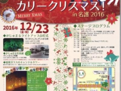 2016年12月23日(金)第2回カリークリスマスin名護 / 名護市・がじゅまる緑地公園