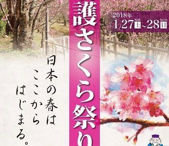2018年1月27日(土)・28日(日)第56回名護さくら祭り / 名護中央公園、他