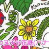カヌチャ花庭(ハナナ)フェスタ2017のフライヤー1