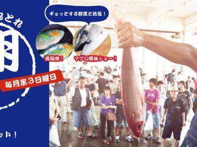 2017年5月21日(日)ウミンチュとれとれ朝市! / 南城市・知念漁業協同組合 セリ市場